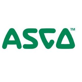 Asco 272851 Ball Valve Strainer Kit